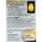 2-3 Kg Himalaya Tuz Lambası