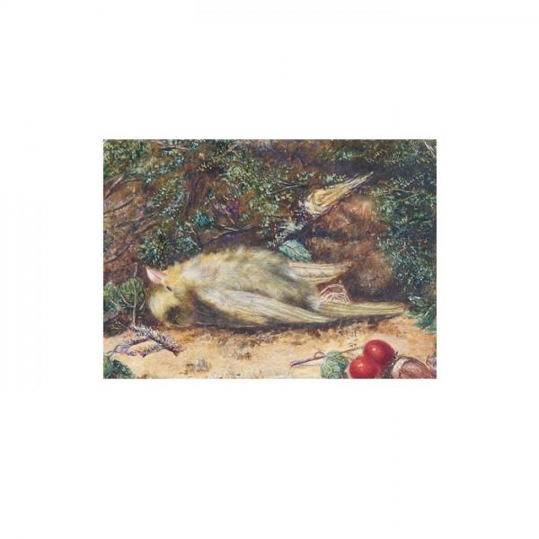 A Fallen Greenfinch 50x70 cm