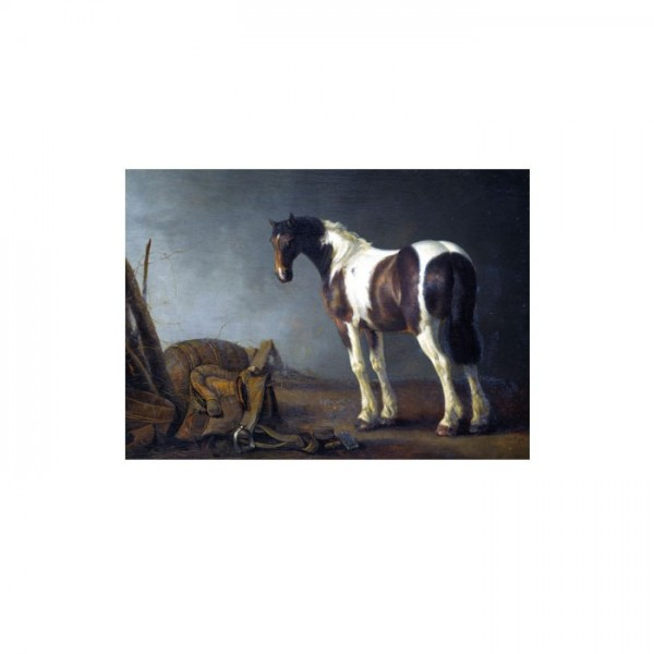 Abraham Van Calraet - A Horse With a Saddle Beside It 50x70 cm
