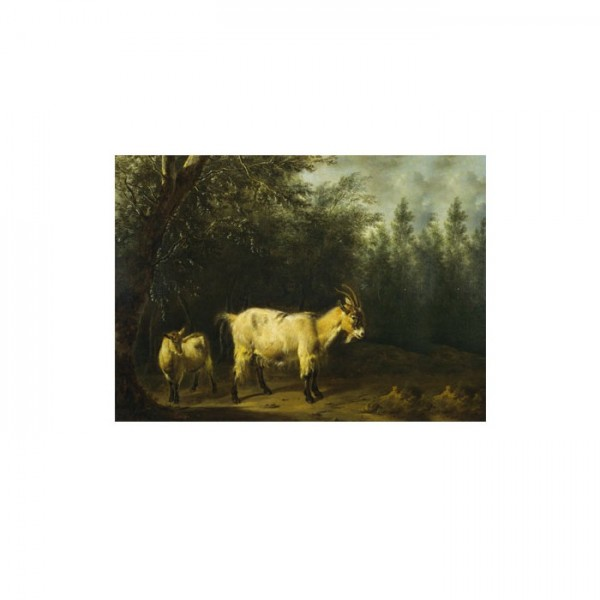 Adriaen Van De Velde - A Goat and a Kid 50x70 cm