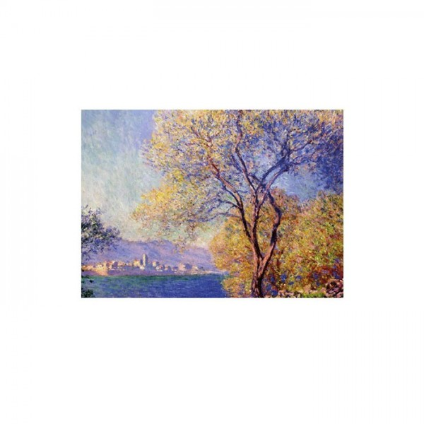 Antibes Seen From The Salis Gardens 50x70 cm