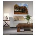 Autumn Landscape 50x70 cm