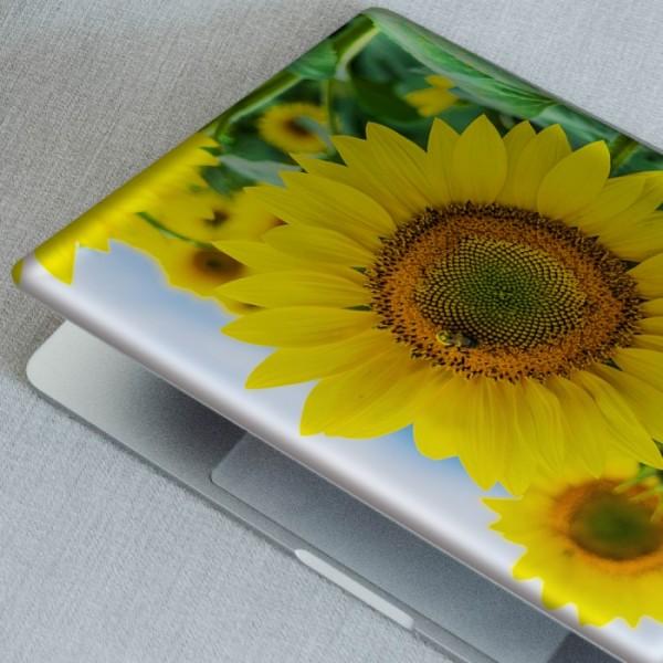 Ayçiçekleri Notebook Sticker