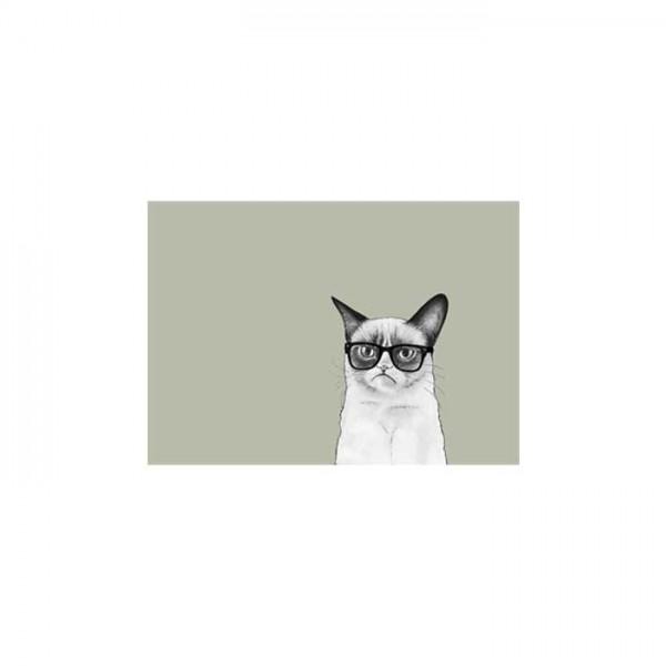 Bilmiş Kedi Notebook Sticker