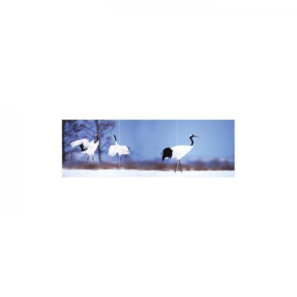 Birds Life 3 Parça Kanvas Tablo 40X120 Cm
