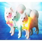 Buffer Işıklı Kedi Köpek Kolyesi (12,5 cm)