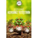 Buffer Konserve Bahçem Çilek Yetiştirme Kiti