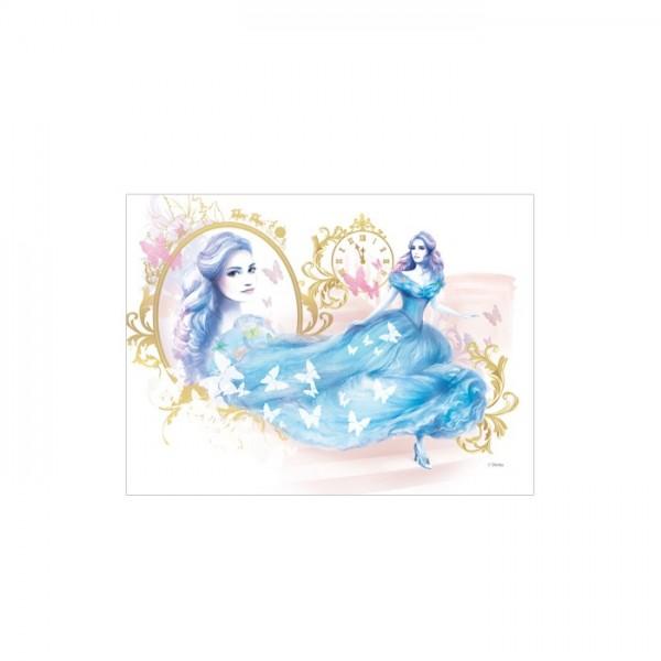 Cindrella-1 50x70 cm Kanvas Tablo