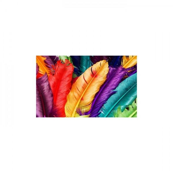 Colorful Feathers 5 Parça Kanvas Tablo 135X85 Cm