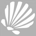 Deniz Kabuğu Stencil Tasarımı 30 x 30 cm