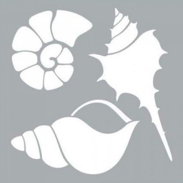 Deniz Kabukları Stencil Tasarımı 30 x 30 cm
