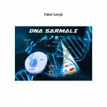 DNA Sarmalı 50x70 cm Duvar Sticker