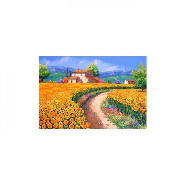 Flower Path 2 Parça Kanvas Tablo 60X40 Cm