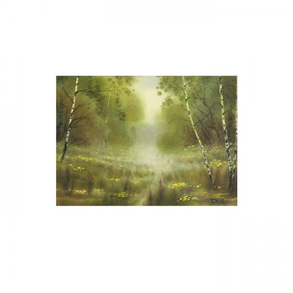 Forest Glade 50x70 cm