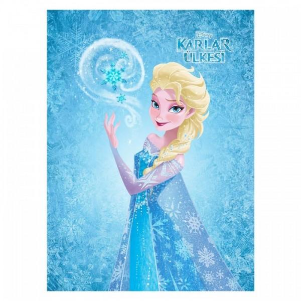 Frozen 50x70 cm Kanvas Tablo