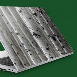 Huş Ağaçları Notebook Sticker