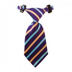Kravatlı Köpek Tasması Min:20 - Max:40 cm Çizgi Desenli